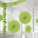 Lime Green Backdrop / Room Decorating Kit, 18 pieces